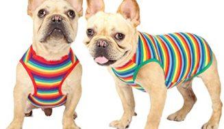 Alta costura para perros